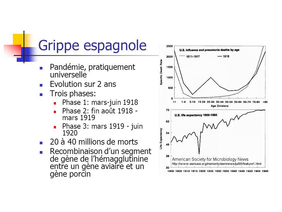Grippe espagnole Pandémie, pratiquement universelle