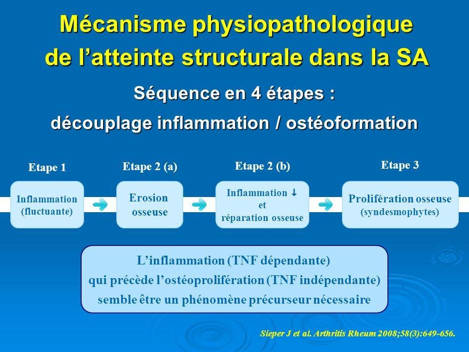Mécanisme physiopathologique de l'atteinte structurale dans la SA