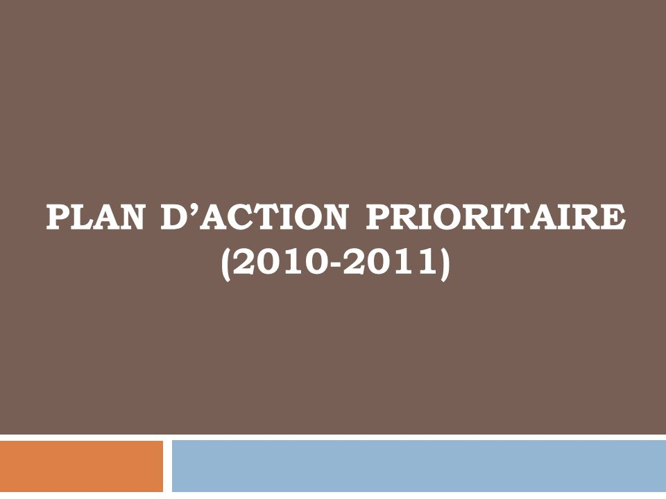 Plan d'action prioritaire (2010-2011)