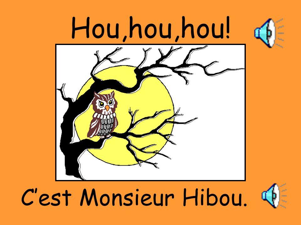 Hou,hou,hou! C'est Monsieur Hibou.