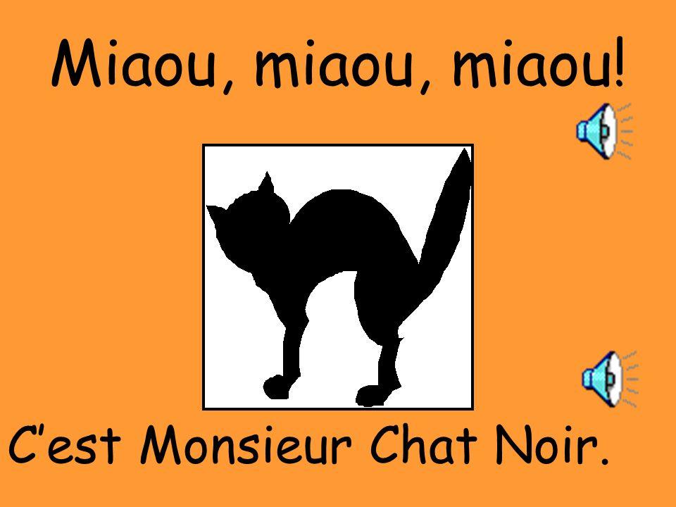 Miaou, miaou, miaou! C'est Monsieur Chat Noir.
