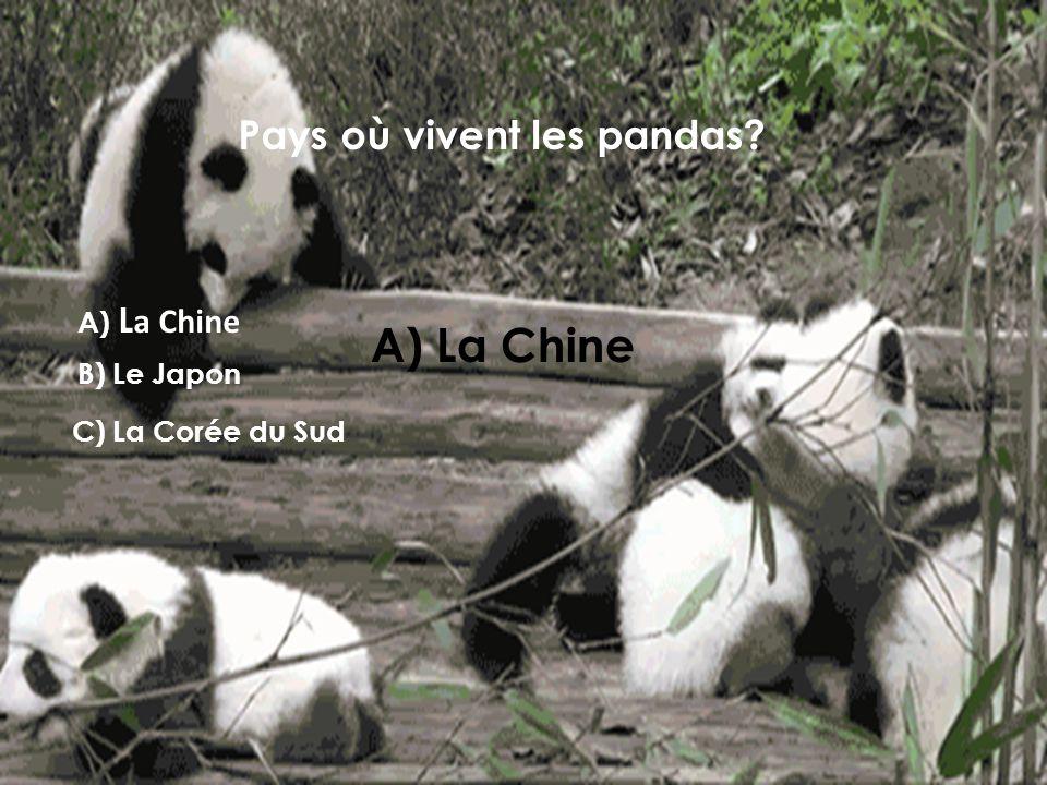 Pays où vivent les pandas