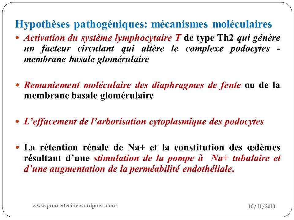 Hypothèses pathogéniques: mécanismes moléculaires