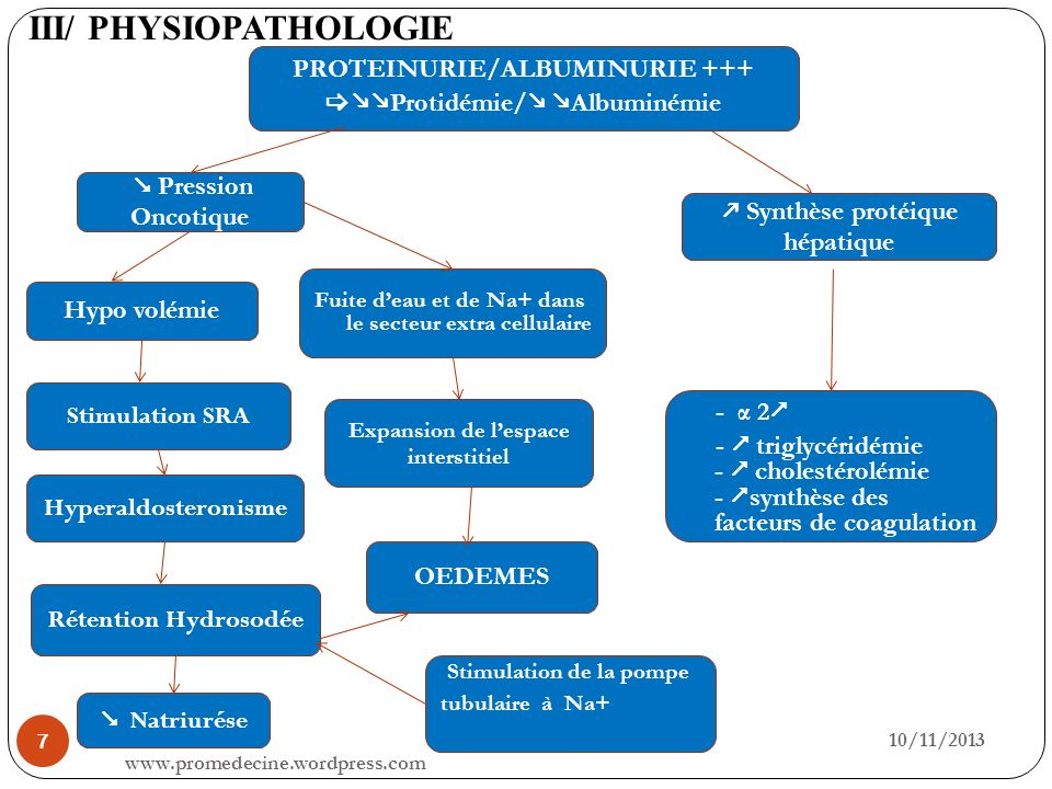 III/ PHYSIOPATHOLOGIE