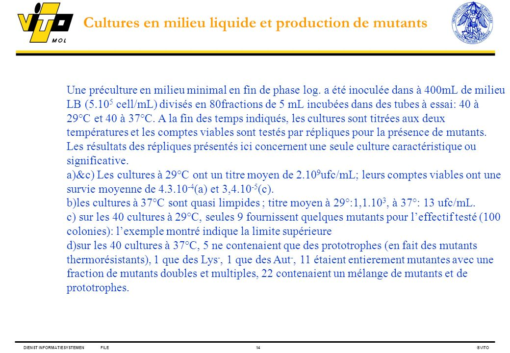 Cultures en milieu liquide et production de mutants