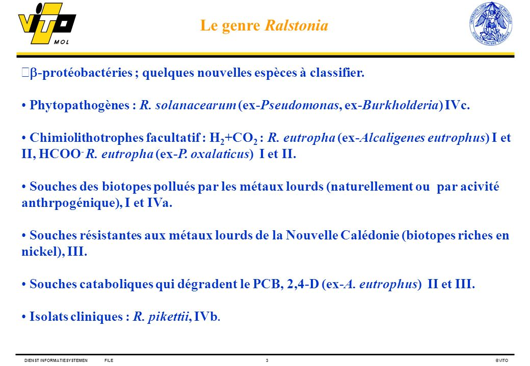 Le genre Ralstonia b-protéobactéries ; quelques nouvelles espèces à classifier.
