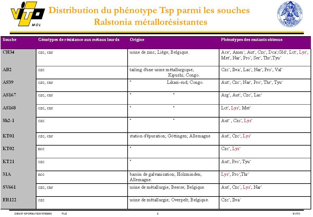 Distribution du phénotype Tsp parmi les souches