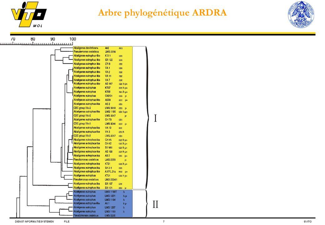 Arbre phylogénétique ARDRA