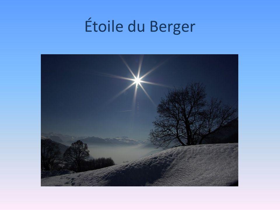 Étoile du Berger