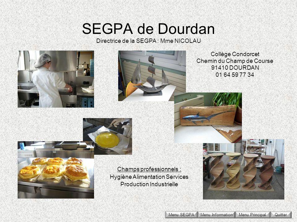 SEGPA de Dourdan Directrice de la SEGPA : Mme NICOLAU