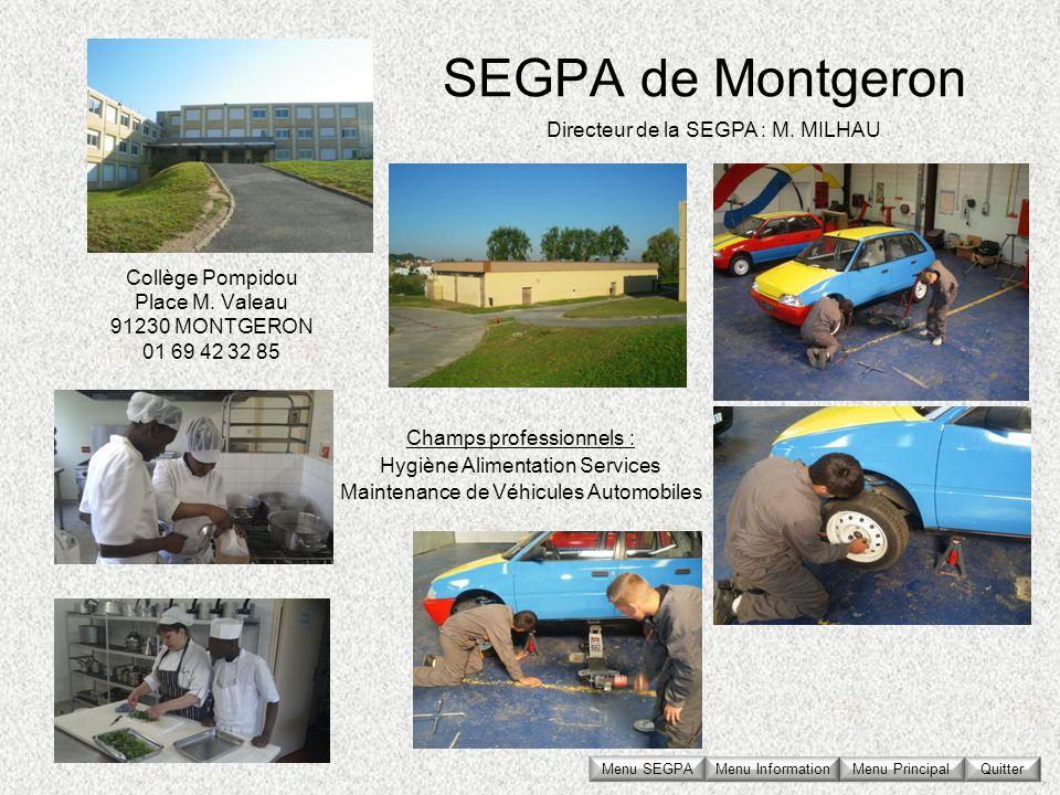 Collège Pompidou Place M. Valeau 91230 MONTGERON 01 69 42 32 85