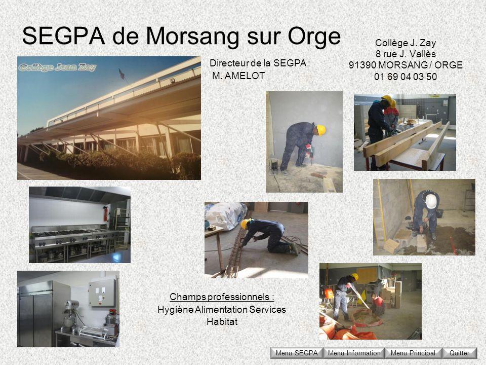 SEGPA de Morsang sur Orge