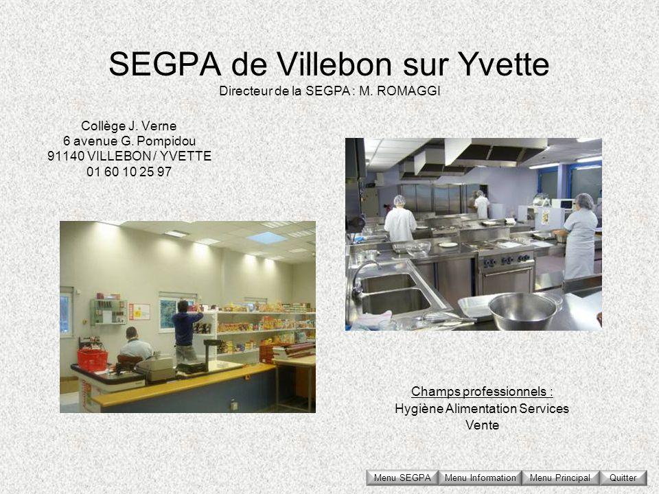 SEGPA de Villebon sur Yvette