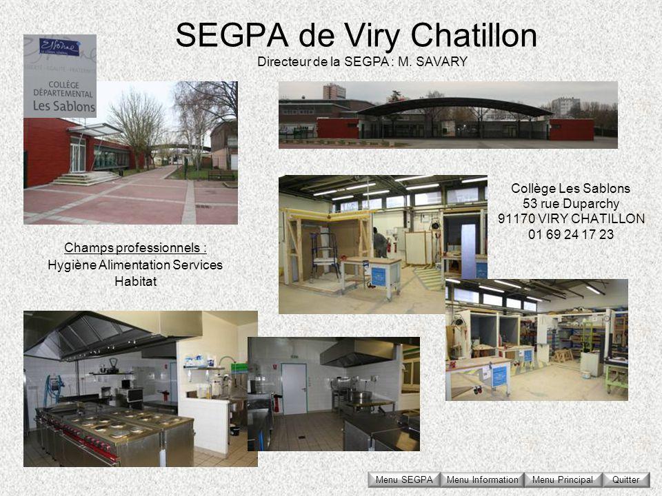 SEGPA de Viry Chatillon