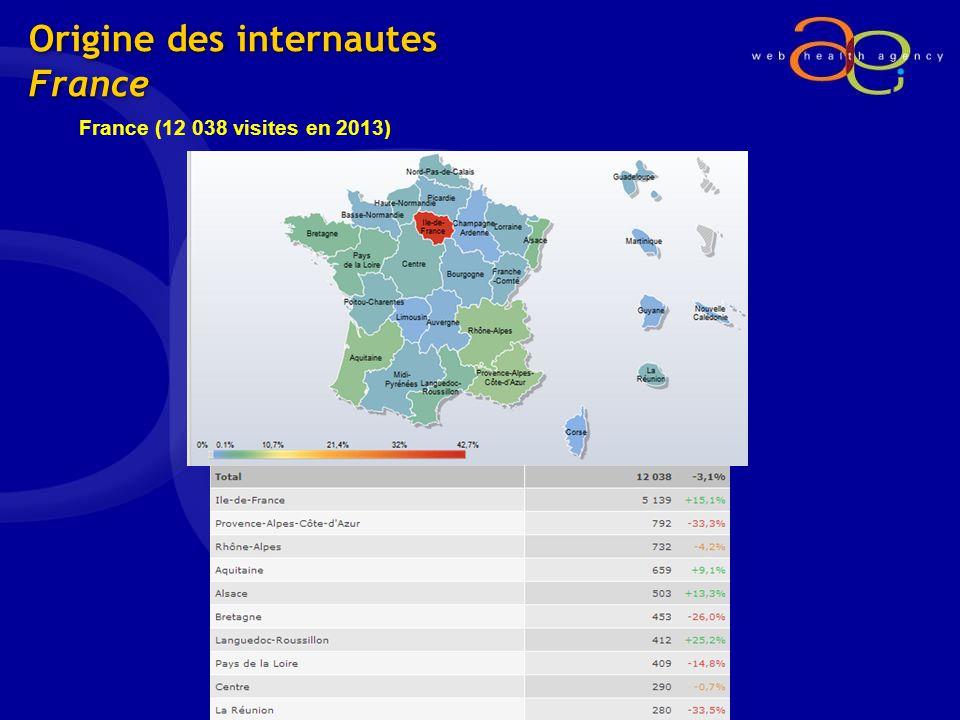 Origine des internautes France