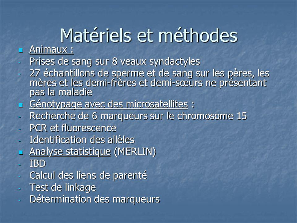 Matériels et méthodes Animaux : Prises de sang sur 8 veaux syndactyles