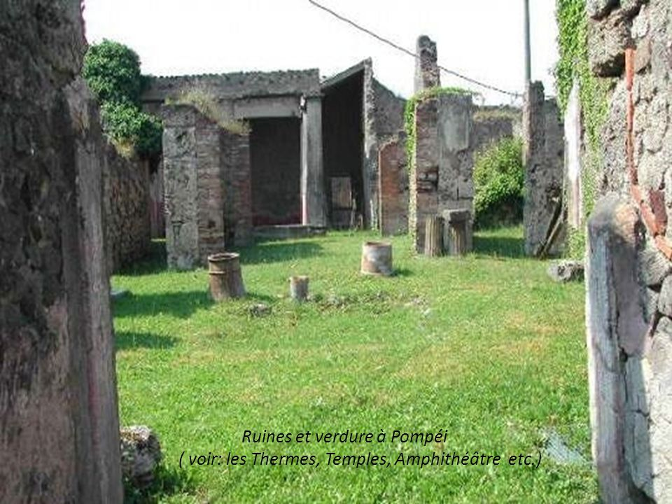 Ruines et verdure à Pompéi ( voir: les Thermes, Temples, Amphithéâtre etc.)