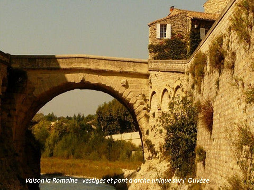 Vaison la Romaine vestiges et pont à arche unique sur l' Ouvèze
