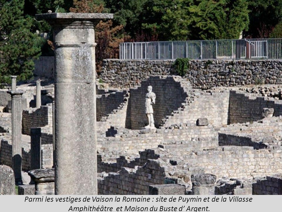 Parmi les vestiges de Vaison la Romaine : site de Puymin et de la Villasse