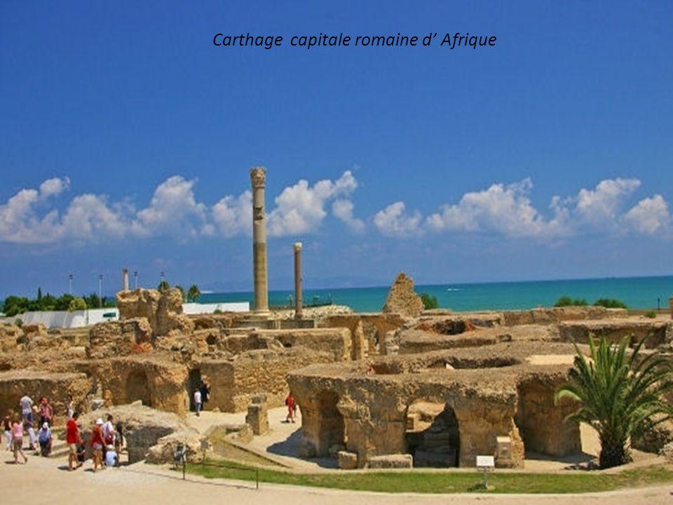 Carthage capitale romaine d' Afrique