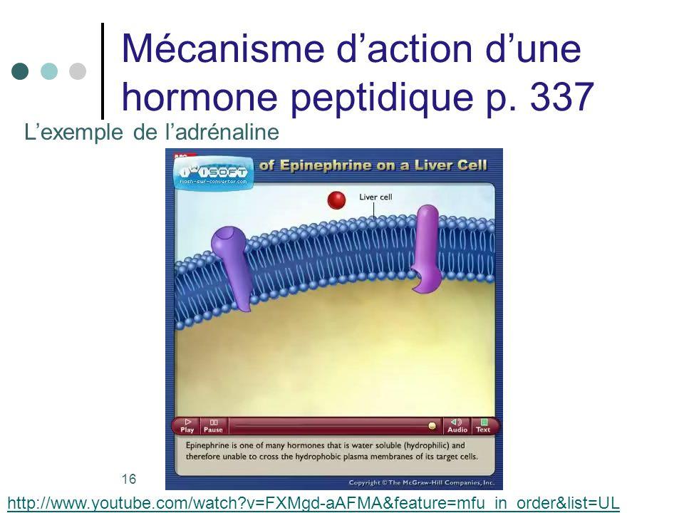Mécanisme d'action d'une hormone peptidique p. 337