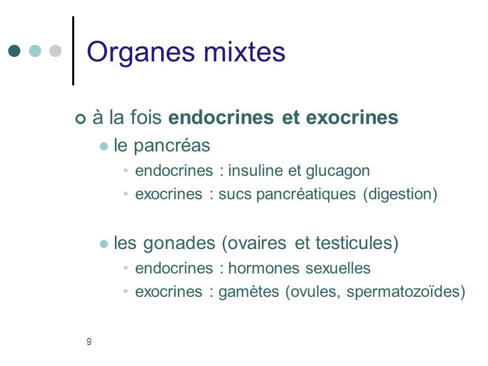 Organes mixtes à la fois endocrines et exocrines le pancréas