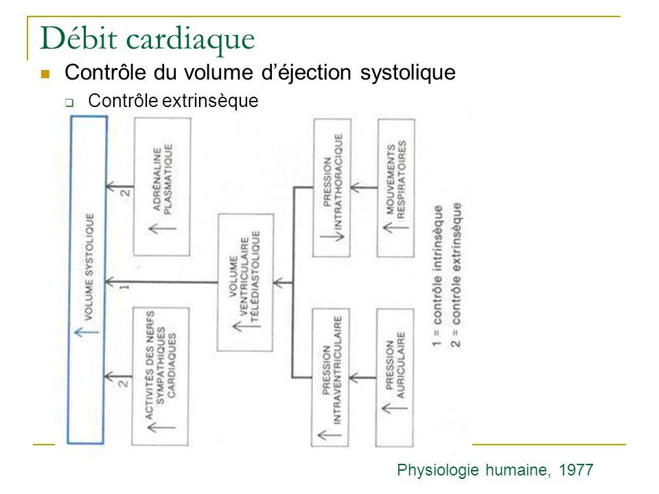 Débit cardiaque Contrôle du volume d'éjection systolique