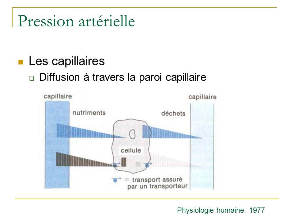 Pression artérielle Les capillaires