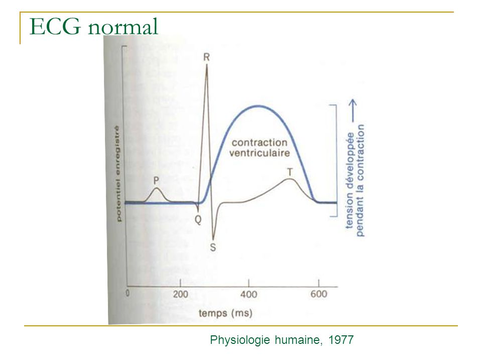 ECG normal Physiologie humaine, 1977