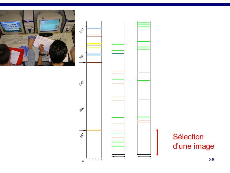 Il est ainsi possible de mettre en relation les actions réalisées sur l'interface de l'application et les tâches d'une démarche d'investigation.