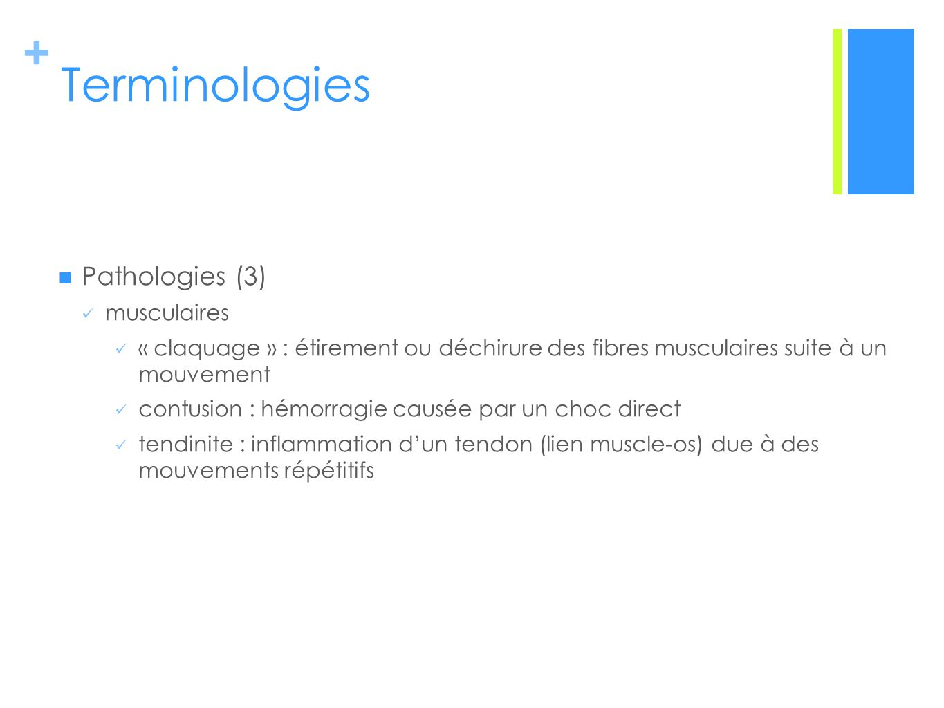 Terminologies Pathologies (3) musculaires