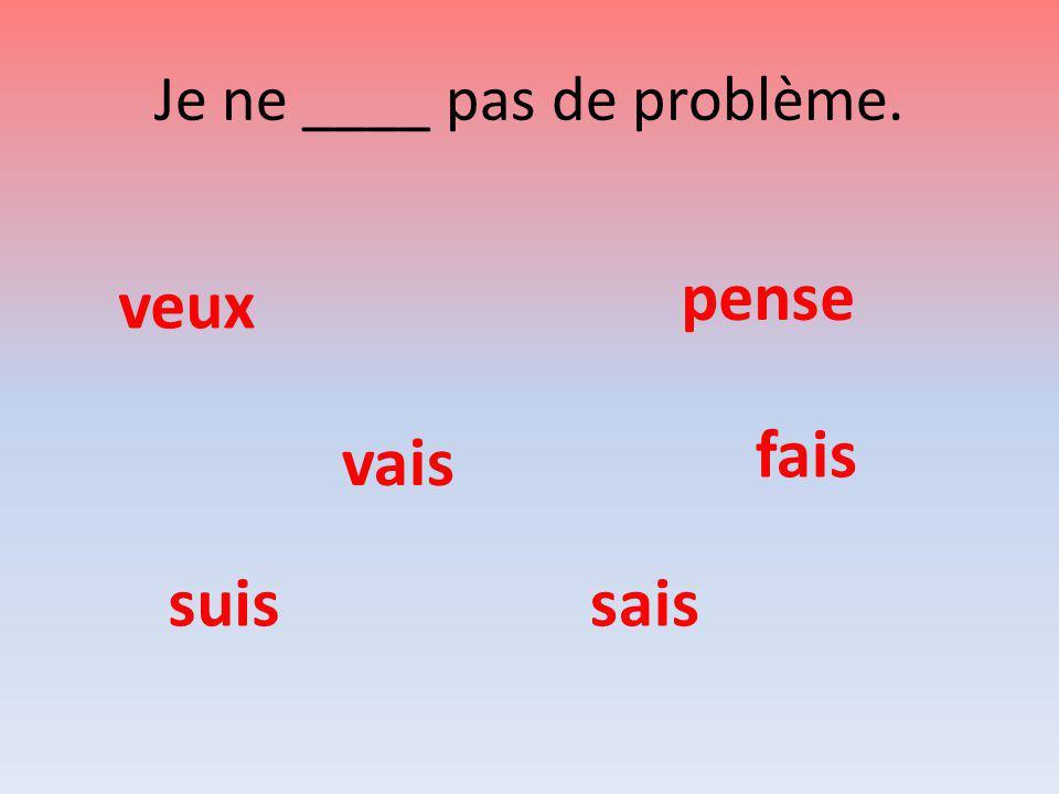 Je ne ____ pas de problème.