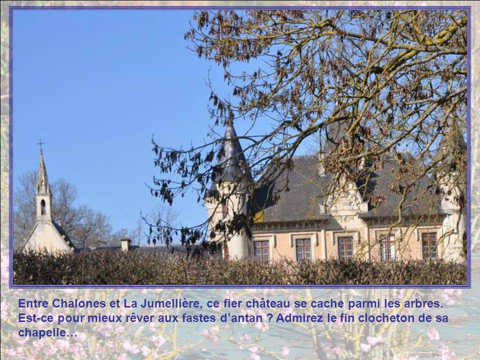 Entre Chalones et La Jumellière, ce fier château se cache parmi les arbres.