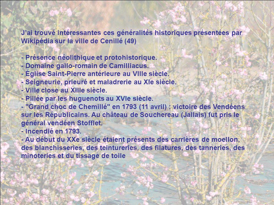 J'ai trouvé intéressantes ces généralités historiques présentées par Wikipédia sur la ville de Cenillé (49)
