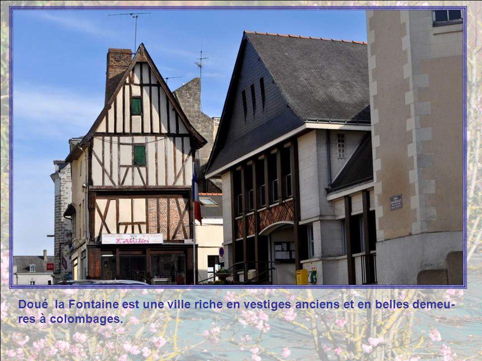 Doué la Fontaine est une ville riche en vestiges anciens et en belles demeu-res à colombages.
