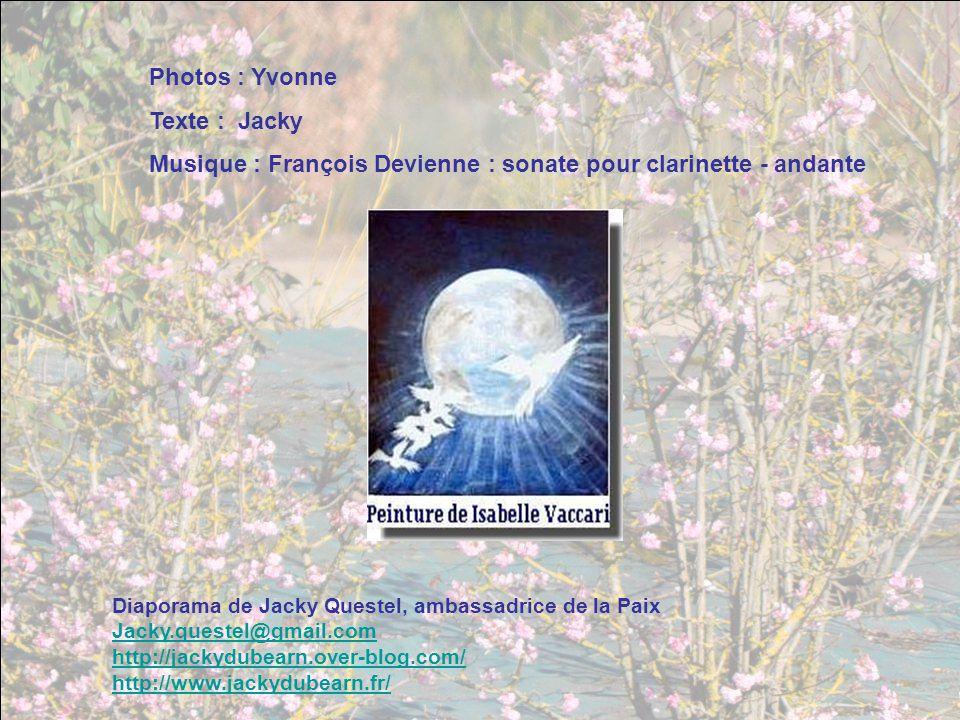 Musique : François Devienne : sonate pour clarinette - andante