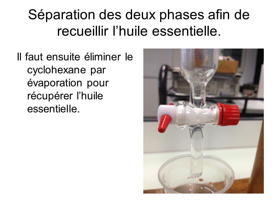 Séparation des deux phases afin de recueillir l'huile essentielle.