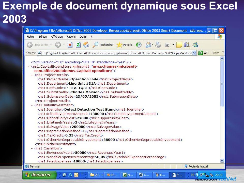 Exemple de document dynamique sous Excel 2003