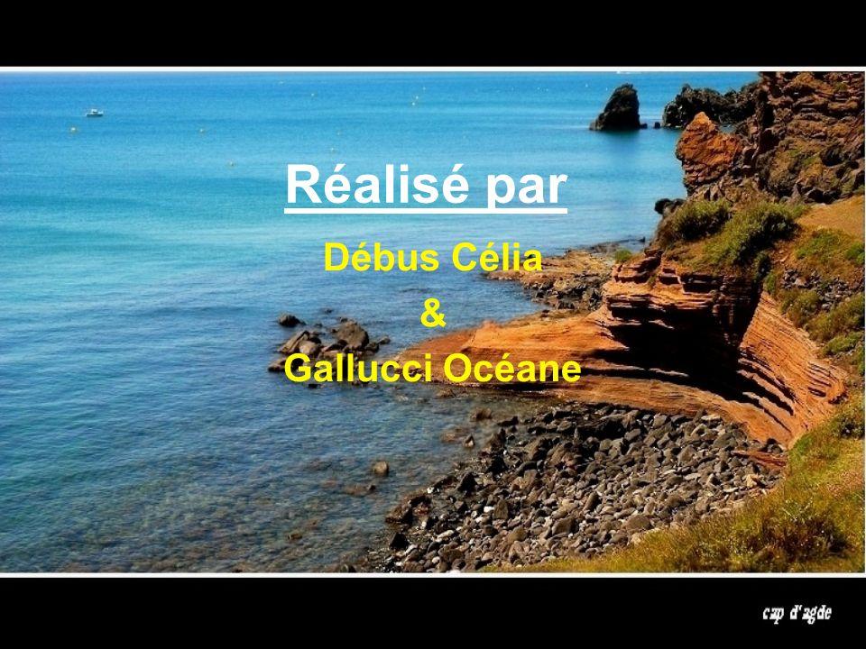Débus Célia & Gallucci Océane