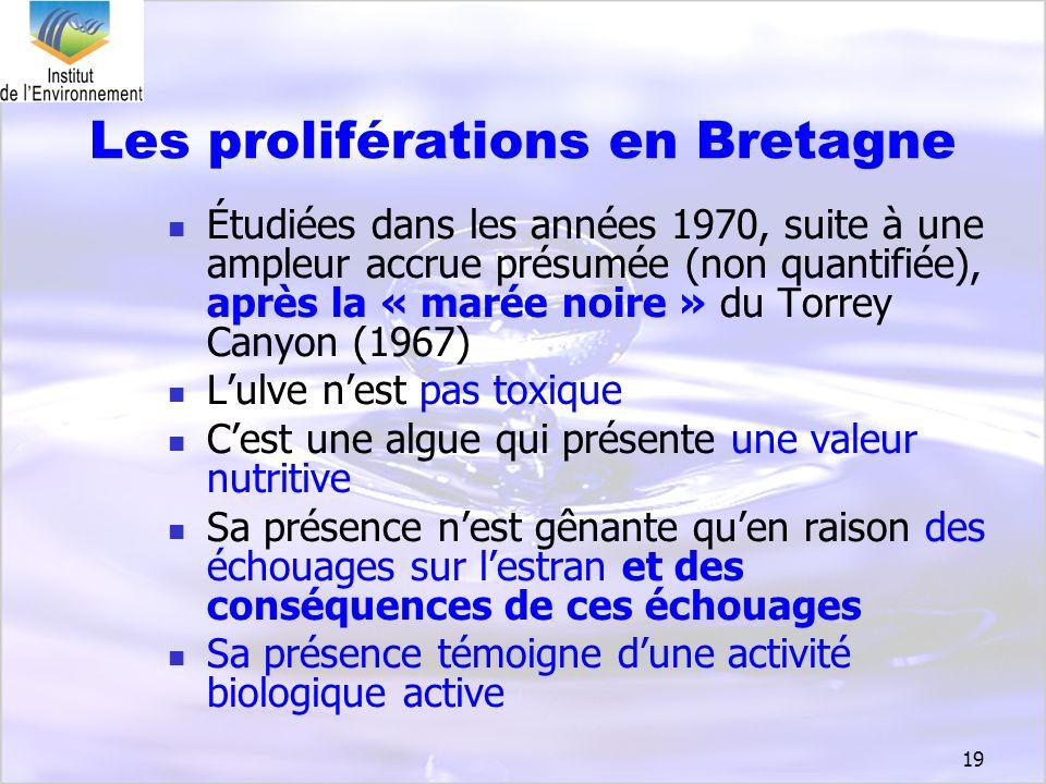 Les proliférations en Bretagne