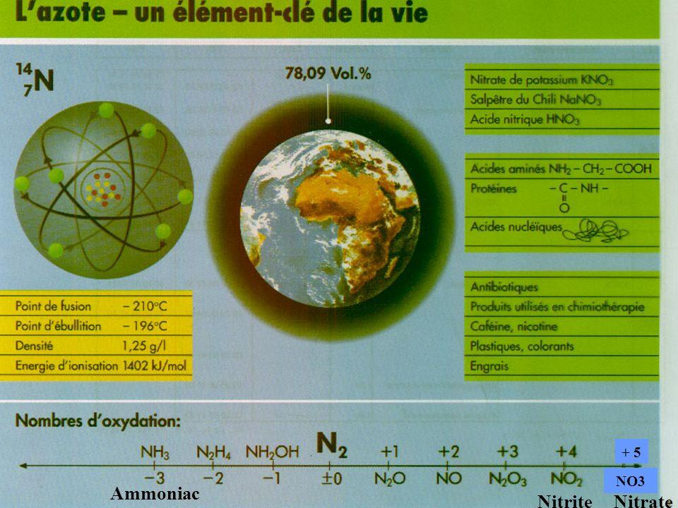 Ammoniac Nitrite Nitrate
