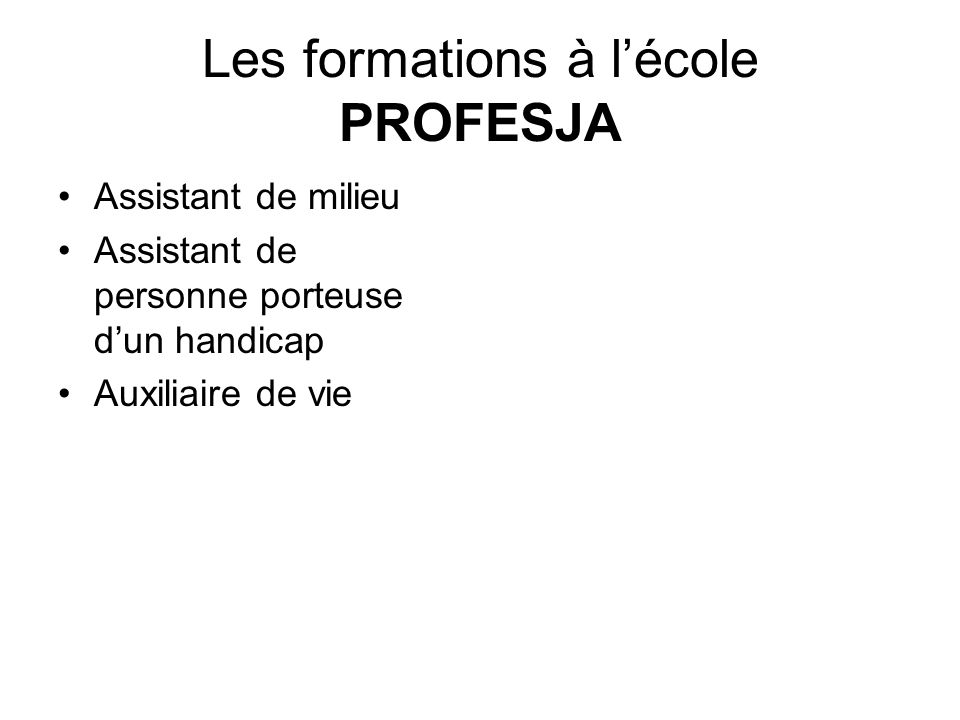 Les formations à l'école PROFESJA