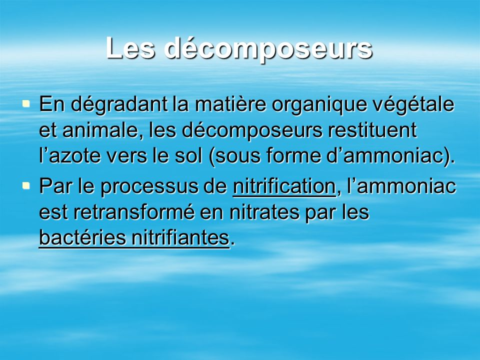 Les décomposeurs En dégradant la matière organique végétale et animale, les décomposeurs restituent l'azote vers le sol (sous forme d'ammoniac).