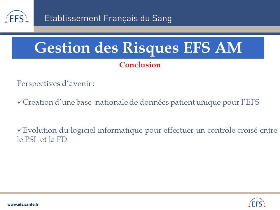 Gestion des Risques EFS AM