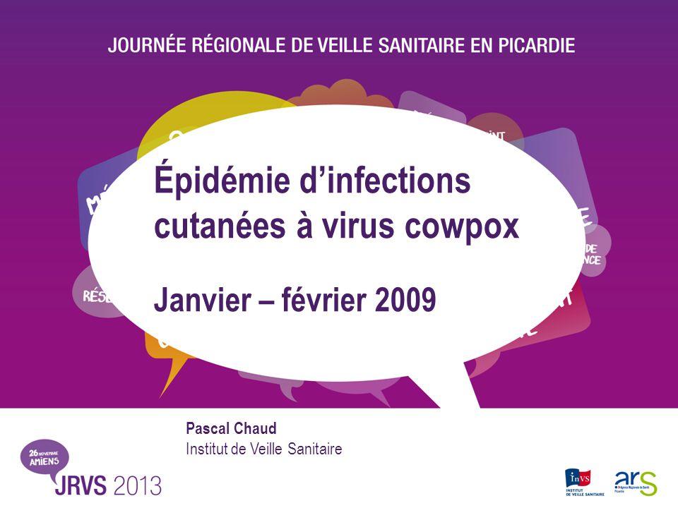 Épidémie d'infections cutanées à virus cowpox
