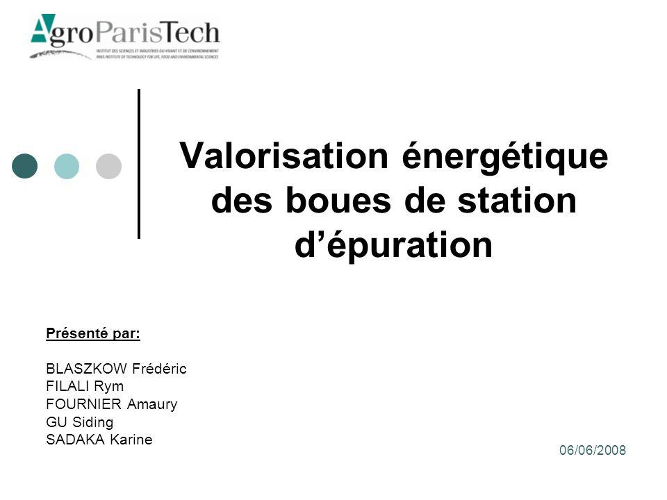 Valorisation énergétique des boues de station d'épuration
