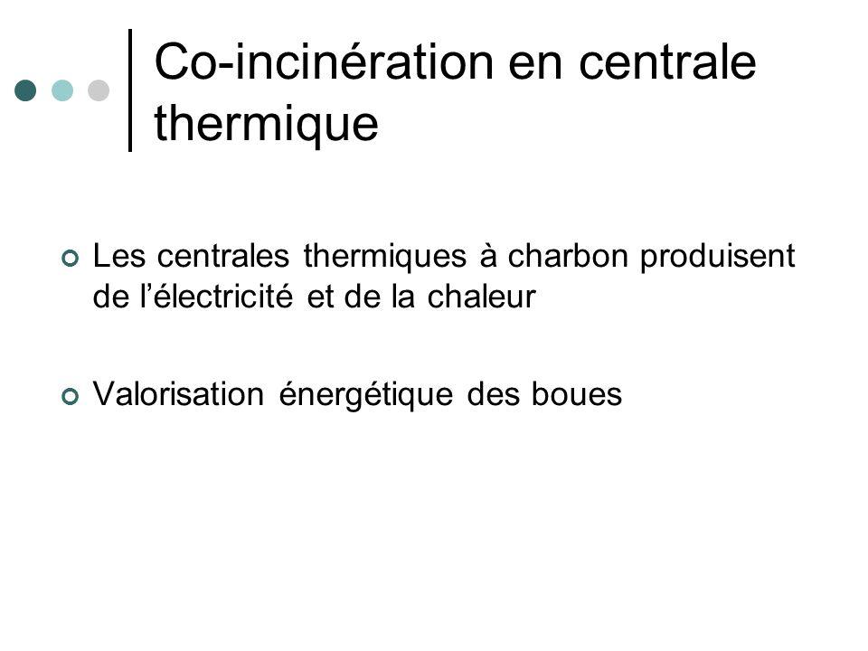 Co-incinération en centrale thermique