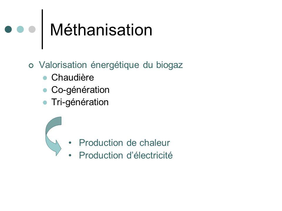 Méthanisation Valorisation énergétique du biogaz Chaudière