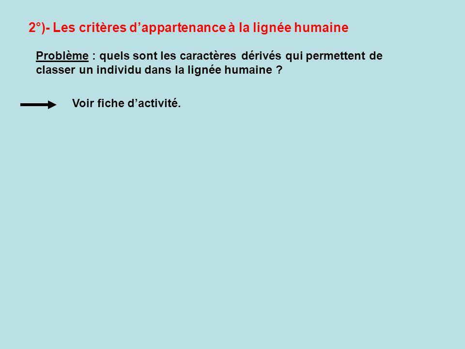 2°)- Les critères d'appartenance à la lignée humaine