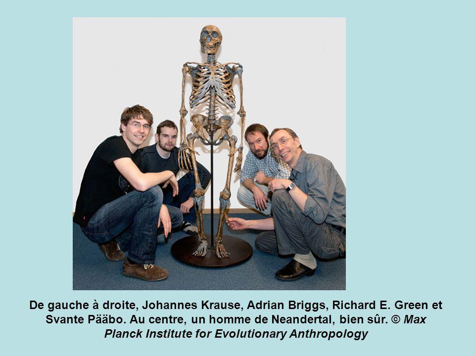 De gauche à droite, Johannes Krause, Adrian Briggs, Richard E